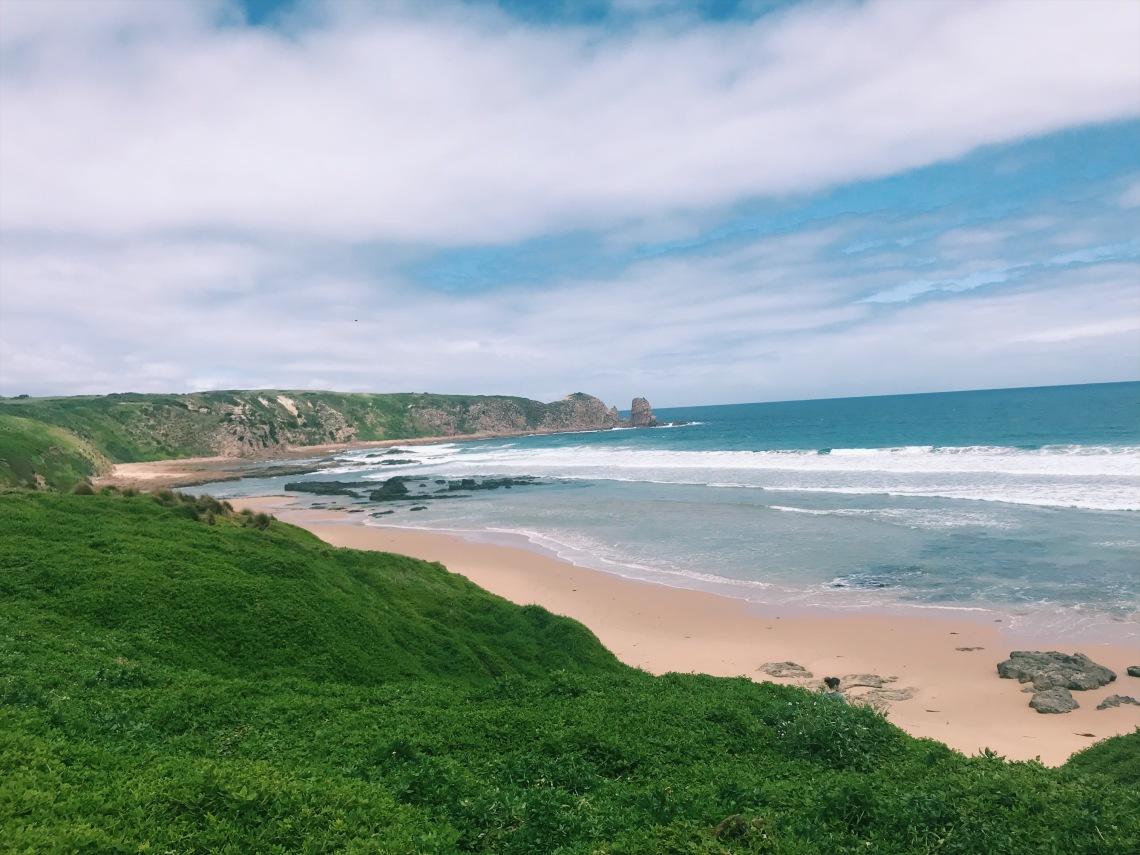 travel guide Australia Philip island