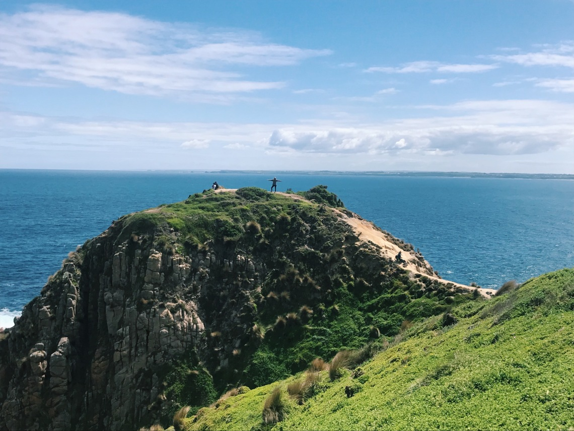 travel guide philip island australia