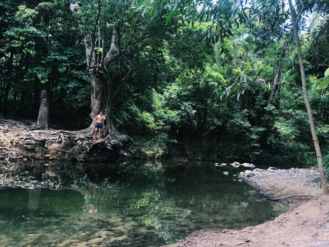 cairns wild swimming best place